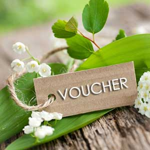 2018 Monetary Vouchers